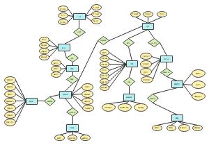 精品课系统数据库ER图