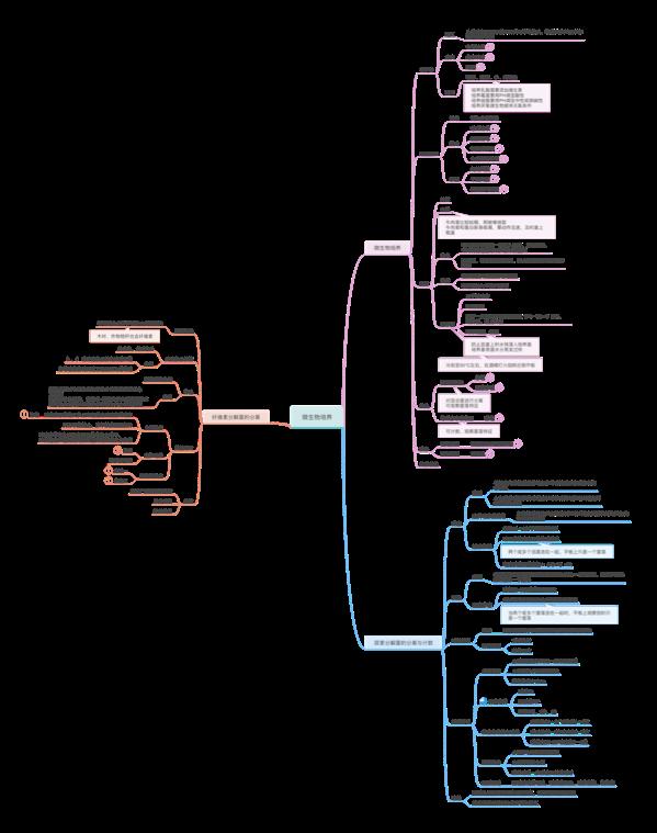 发酵技术与微生物培养