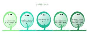 春季树木护理顺序图模板