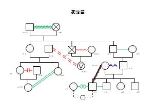 家庭关系示例图