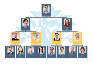 家庭人物关系图像树