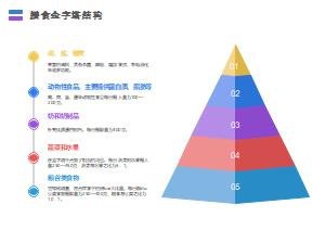 膳食金字塔结构