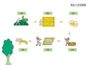 制茶工艺流程图