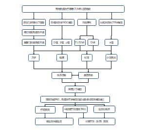 胃癌医疗流程图