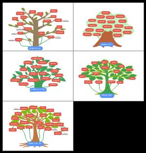 英语空间词根记忆树in-,down-,under-,by-,out-;
