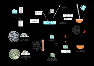 CNC气凝胶制备过程