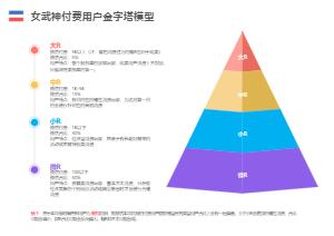 女武神付费用户金字塔模型