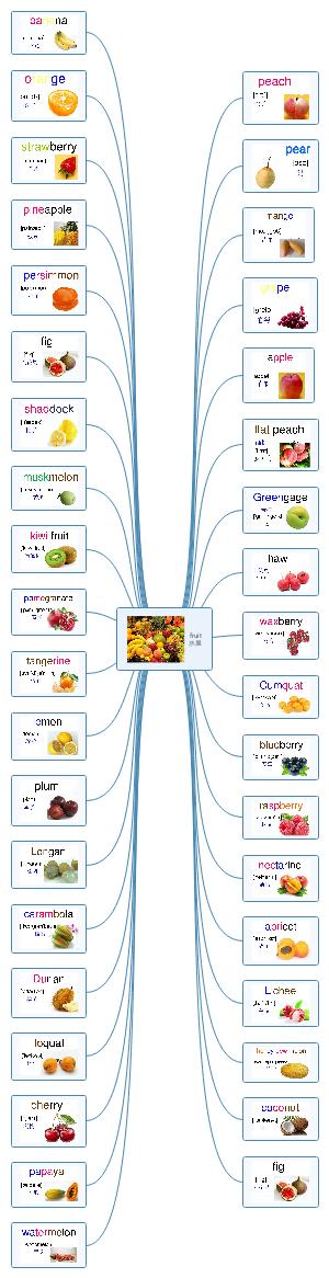 水果英语单词导图