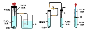 氢氧化亚铁的制取